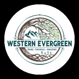 Western Evergreen | Home